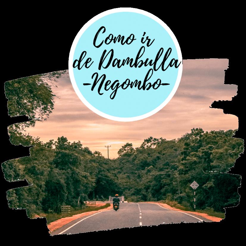 Cómo ir de Dambulla a Negombo
