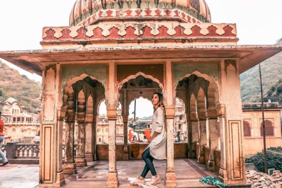 templo monos jaipur