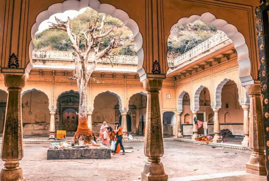 templo de los monos india