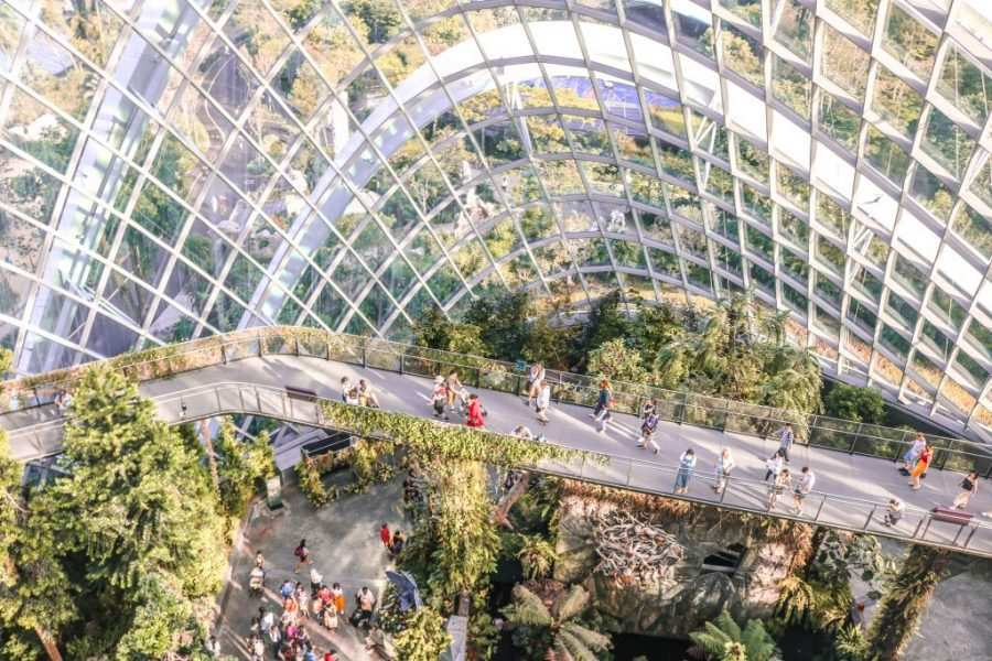 cloud forest singapur