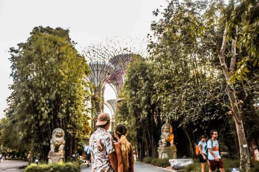 singapur parque arboles