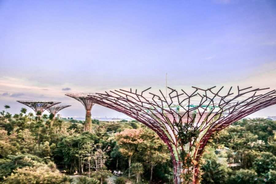 super arboles singapur