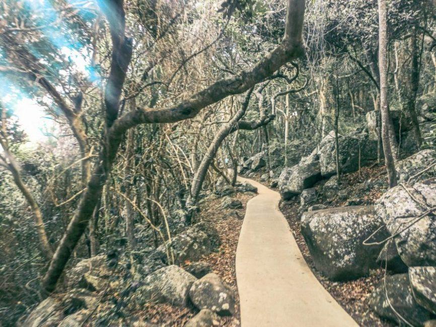 Burleigh Heads National Park