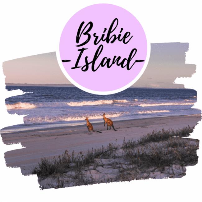 Guía para viajar a Bribie Island