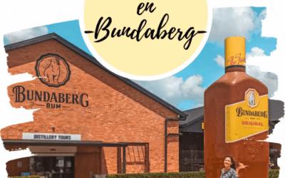 Qué hacer en Bundaberg