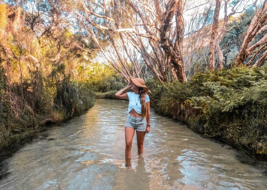 visitar isla fraser australia