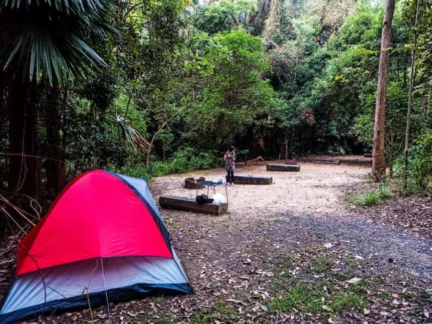 Guía para visitar Eungella National Park