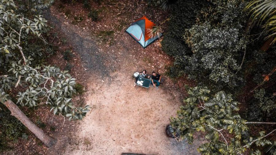 como ver platypus eungella national park