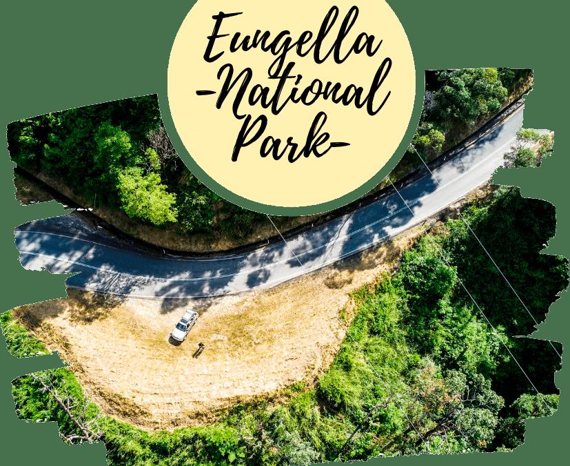 ver ornitorrincos en eungella national park