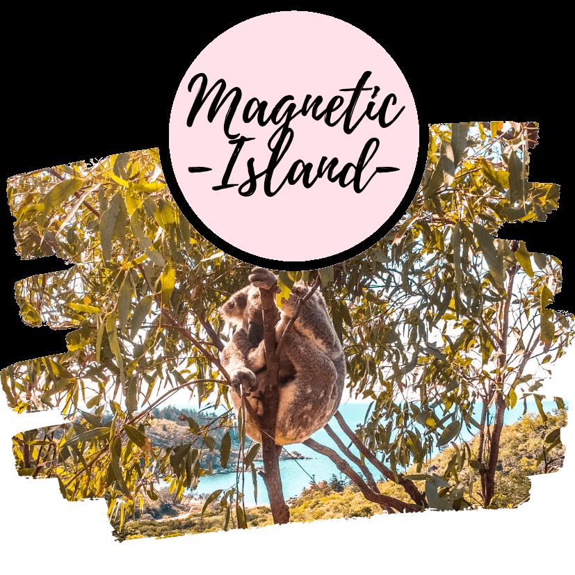 Qué hacer en Magnetic Island